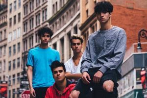 Dobre Brothers's net worth