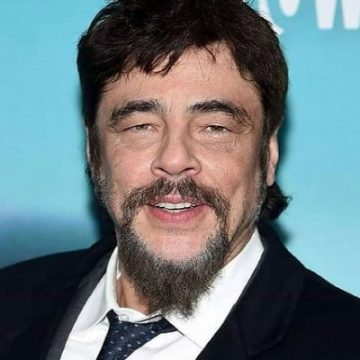Who Is Benicio Del Toro's Wife? He Is A Proud Father Of One